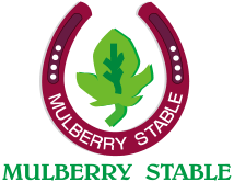 桑田牧場 MULBERRY STABLE